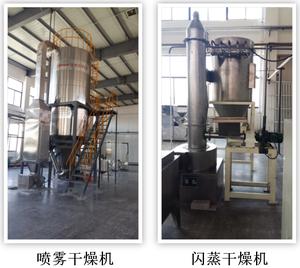 干燥与制剂研发